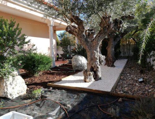 Jardim Privado – Entroncamento